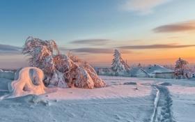 Картинка зима, снег, пейзаж, закат