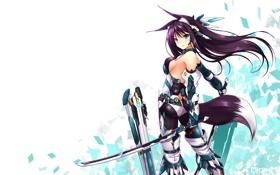 Картинка Девушка, костюм, белый фон, мечи