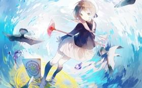 Обои девушка, чайки, аниме, арт, форма, kinomoto sakura, card captor sakura