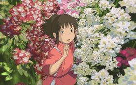 Картинка цветы, аниме, девочка, spirited away, унесенные призраками, хаяо миядзаки, тихиро