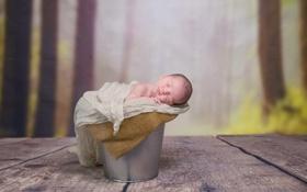 Картинка фон, ведро, младенец