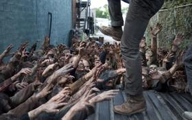 Картинка zombies, The Walking Dead, despair, kicking