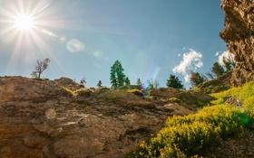 Обои США, фото, лучи света, природа, Grand Teton, парк, солнце