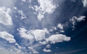 Картинка sky, clouds, day, noon