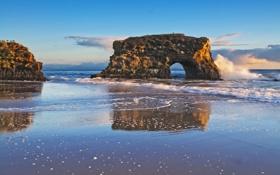 Картинка море, волны, вода, брызги, птицы, камни, фото