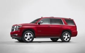 Обои Chevrolet, внедорожник, эмблема, TAHOE
