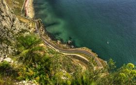 Обои дорога, море, природа, скала, пальмы, побережье, Gibraltar