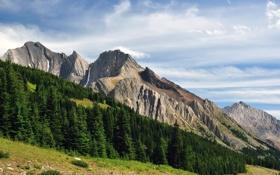 Обои небо, деревья, горы, Alberta, Canada, Kananaskis