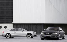 Картинка черный, Audi, машины, серый