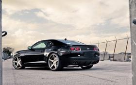 Обои чёрный, Chevrolet, Camaro, шевроле, мускул кар, black, камаро