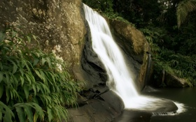 Картинка природа, скалы, водопад, джунгли