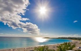 Обои море, небо, солнце, облака, лучи, пальмы, берег