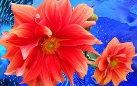 Обои линии, цветы, рендеринг, краски, лепестки, штрихи