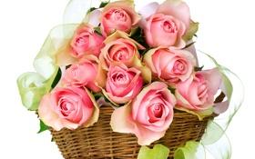 Картинка розы, букет, лента, корзинка