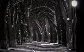 Обои снег, ночь, лавочка, фонарь, набережная, черно белая