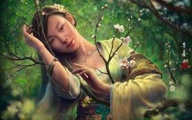 Картинка взгляд, девушка, цветы, дерево, весна, сакура, арт