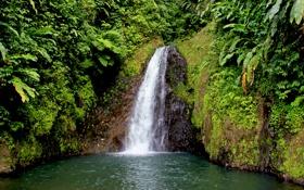 Картинка зелень, трава, вода, пейзаж, природа, озеро, камни
