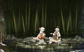 Обои ночь, девочки, игра, аниме, речка, Touhou Project