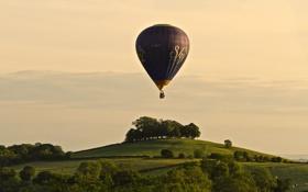 Обои закат, небо, воздушный шар, тень, поле, коровы, экстремальный спорт