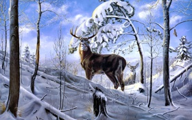 Картинка зима, лес, снег, деревья, олень, арт, Charles H. Denault