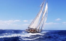 Картинка море, волны, яхта