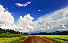 Картинка дорога, трава, деревья, горы, природа, путь, обои