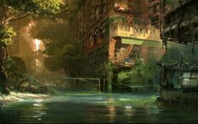 Обои город, апокалипсис, здание, болото, Crysis 3