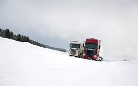 Обои Зима, Снег, Грузовик, Truck, Scania, Тягач, Скания