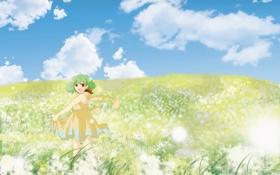 Обои лето, цветы, аниме, луг, девочка, макросс фронтир