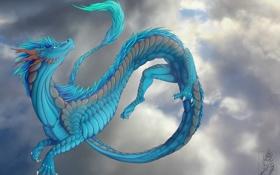 Обои небо, взгляд, облака, синий, фантастика, дракон, арт