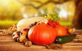 Обои осень, грибы, яблоки, фрукты, урожай, тыква, овощи