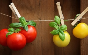 Обои помидоры, шпагат, прищепки, томаты