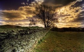 Картинка небо, пейзаж, природа, забор