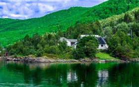 Картинка лес, небо, облака, деревья, дом, склон, залив