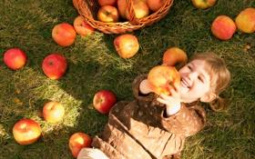 Картинка осень, трава, корзина, яблоки, маленькая, дети, ребенок