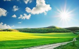 Обои трава, Пейзаж, небо, дорога, арт, горы, солнце