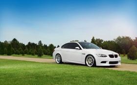 Картинка небо, трава, бмв, BMW, белая, white, блик