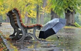 Картинка улица, зонт, скамья