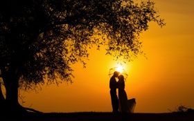 Обои чувства, поцелуй, счастье, радость, силуэт, пара, закат