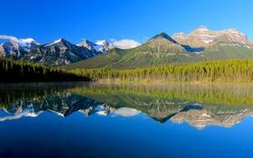 Картинка лес, небо, горы, озеро, отражение, Канада, Альберта