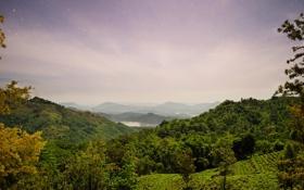 Обои леса, Sri Lanka, панорама, природа, остров, горы, поля