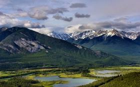 Обои лес, горы, природа, озеро, Banff National Park, Vermillion Lakes