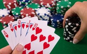 Обои игра, покер, казино