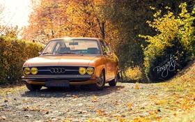 Обои Audi, Ауди, Осень, Купе, 100, Coupe S