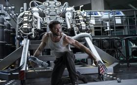 Картинка Росомаха, Wolverine, Hugh Jackman, Logan, Хью Джекман, The Wolverine, Бессмертный