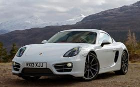 Обои Porsche, Cayman, автомобиль, порше, передок, кайман