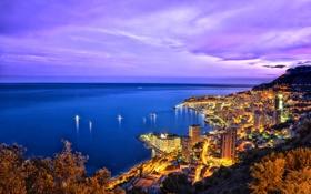 Картинка море, ночь, огни, побережье, горизонт, Монако, Monte Carlo