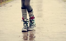 Картинка макро, улица, ноги
