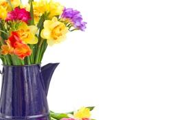 Картинка colorful, flowers, нарциссы, spring, bouquet