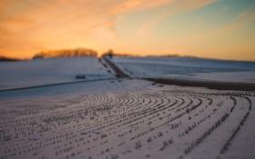 Картинка дорога, поле, небо, снег, закат, вечер